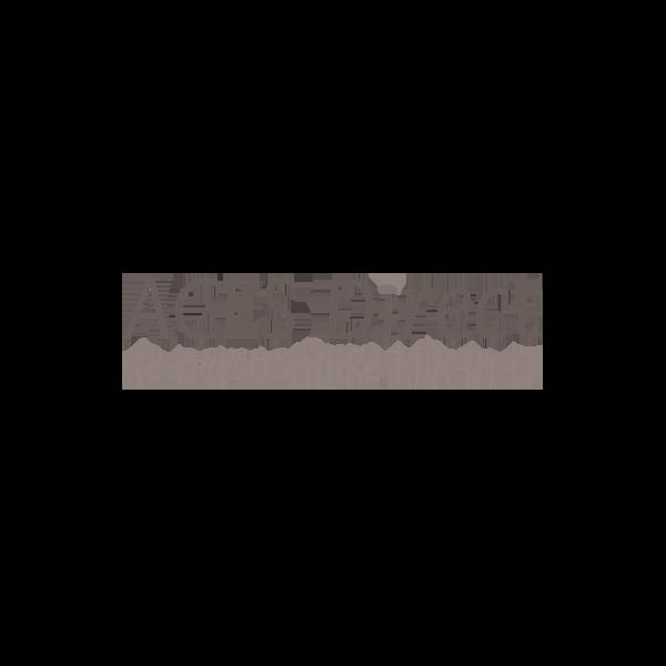 ACES-Direct-Logo