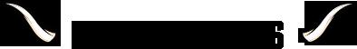 Dn-Schele-Os-Succesverhaal-Logo